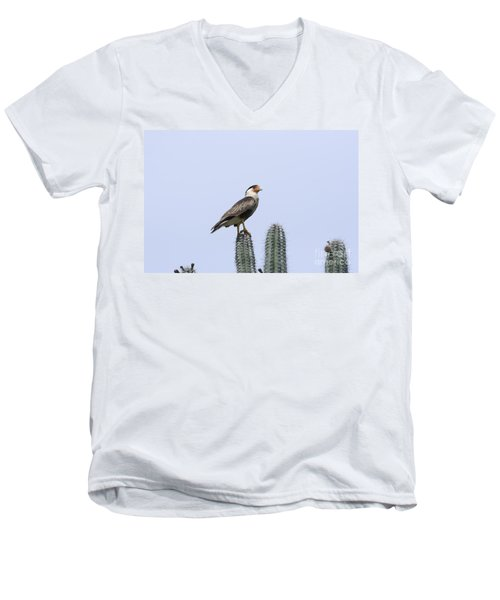 Men's V-Neck T-Shirt featuring the photograph Southern Crested-caracara Polyborus Plancus by David Millenheft