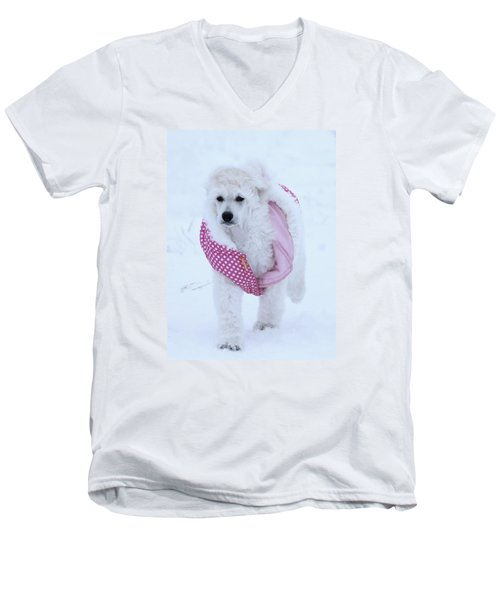 Standard Poodle In Winter Men's V-Neck T-Shirt by Lisa  DiFruscio