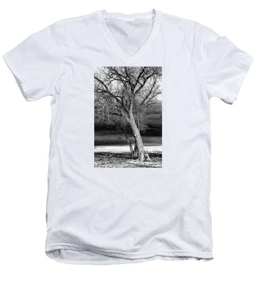 Storm Tree Men's V-Neck T-Shirt by Steven Reed