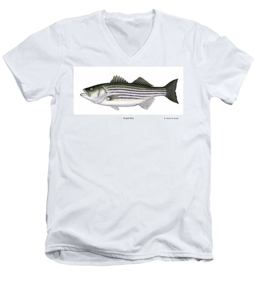 Striped Bass Men's V-Neck T-Shirt by Charles Harden