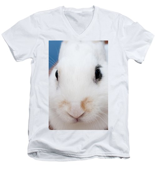 sugar the easter bunny 1 -A curious and cute white rabbit close up Men's V-Neck T-Shirt by Pedro Cardona