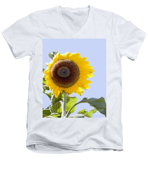 Men's V-Neck T-Shirt featuring the photograph Sunflower In The Blue Sky by David Millenheft