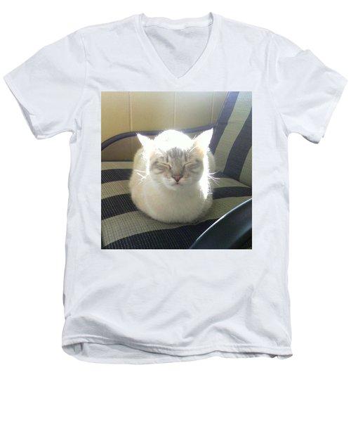 Sunshine Kitty Men's V-Neck T-Shirt by Deborah Lacoste