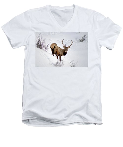 Men's V-Neck T-Shirt featuring the photograph Surviving by Jeremy Rhoades