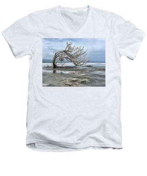 A Smal Giant Bush Men's V-Neck T-Shirt