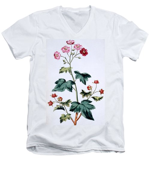 Sweet Canada Raspberry Men's V-Neck T-Shirt by John Edwards