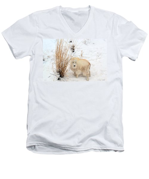 Sweet Little One Men's V-Neck T-Shirt