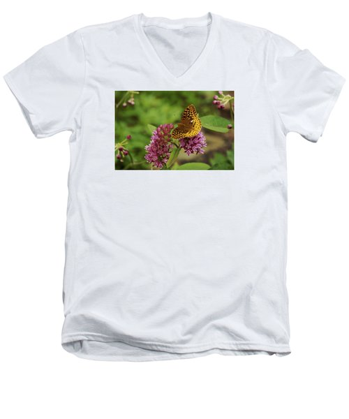 Men's V-Neck T-Shirt featuring the photograph Sweet Nectar - Butterfly On Milkweed Art Print by Jane Eleanor Nicholas