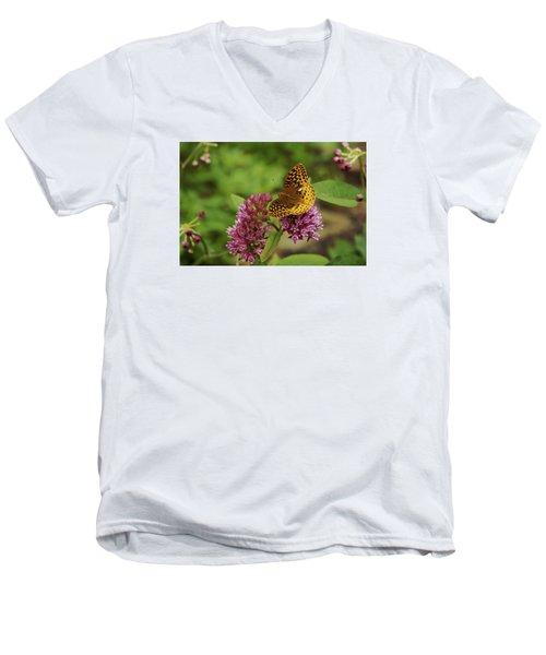 Sweet Nectar - Butterfly On Milkweed Art Print Men's V-Neck T-Shirt