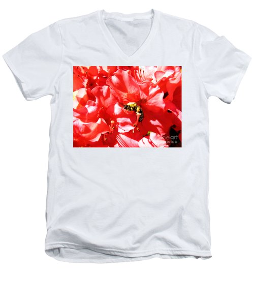 Sweet Surrender Men's V-Neck T-Shirt