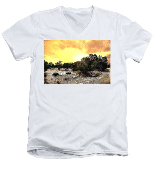 Texas Hill Country Men's V-Neck T-Shirt