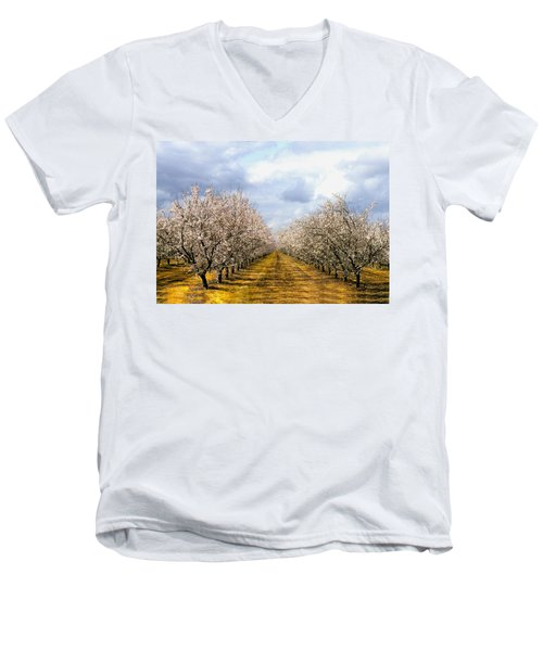The Almond Orchard Men's V-Neck T-Shirt