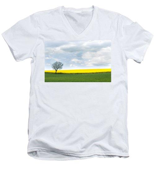 The Colors Of Spring Men's V-Neck T-Shirt