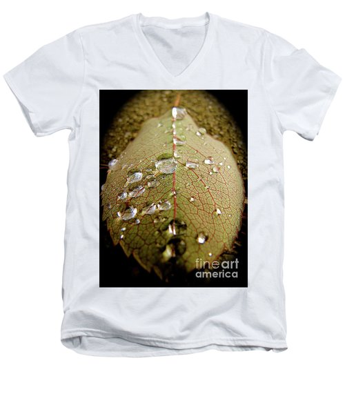 The Leaf After Rain Men's V-Neck T-Shirt by CML Brown
