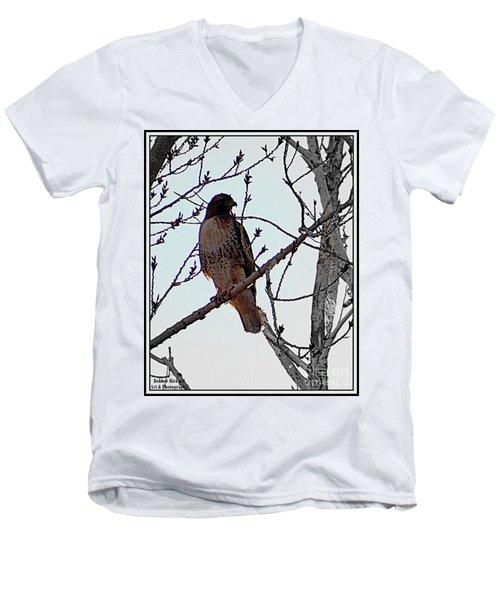 The Majestic Hawk Men's V-Neck T-Shirt
