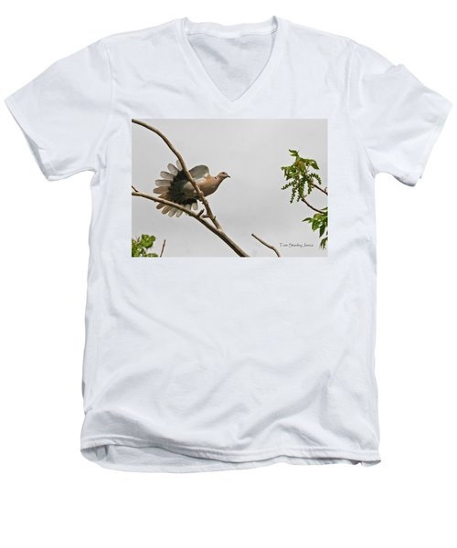 The New Dove In Town Men's V-Neck T-Shirt by Tom Janca