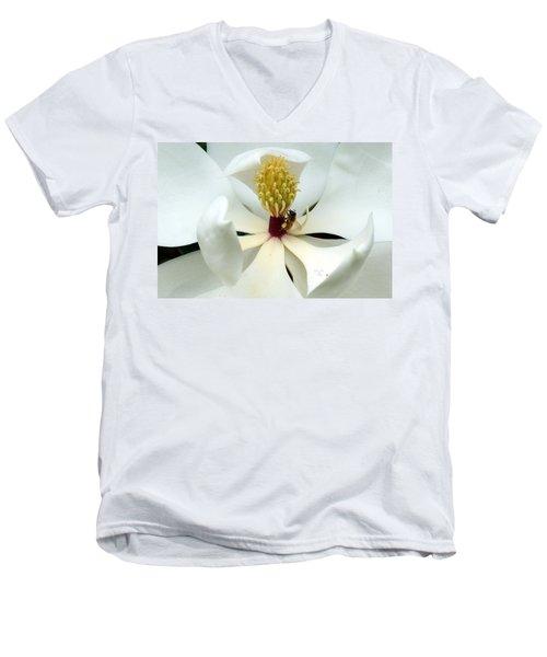 The Southern Magnolia Men's V-Neck T-Shirt by Kim Pate