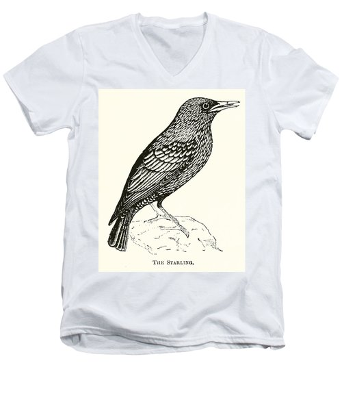 The Starling Men's V-Neck T-Shirt by English School