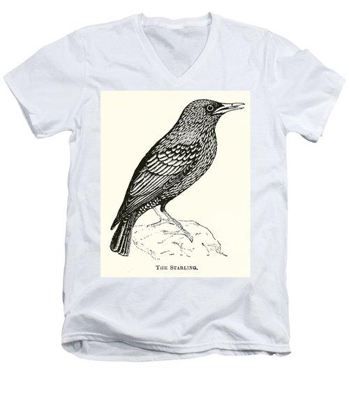 The Starling Men's V-Neck T-Shirt