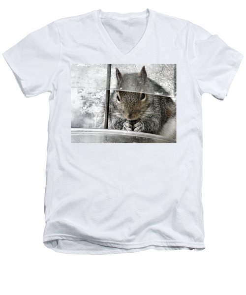 Thief In The Birdfeeder Men's V-Neck T-Shirt