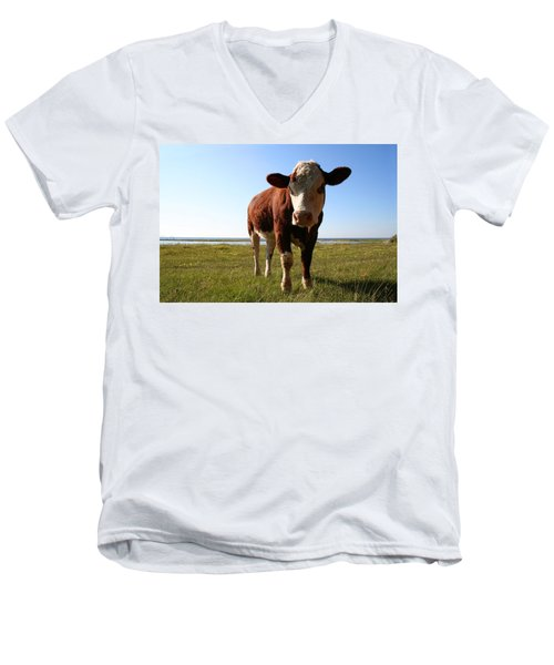 This Is My Grass Men's V-Neck T-Shirt