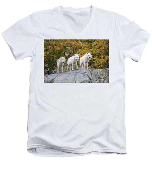 Three Of A Kind Men's V-Neck T-Shirt
