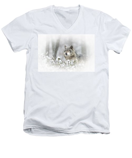Timber Wolf Pictures 279 Men's V-Neck T-Shirt