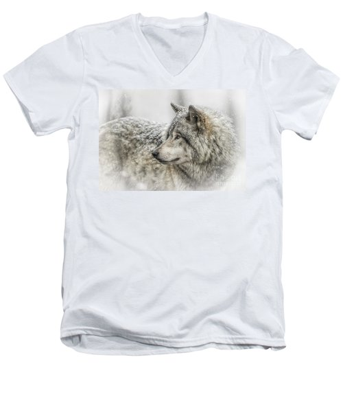 Timber Wolf Pictures 280 Men's V-Neck T-Shirt