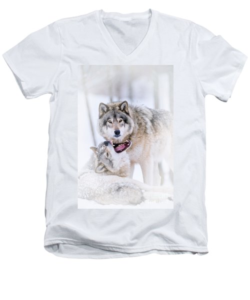Timber Wolf Pictures 56 Men's V-Neck T-Shirt