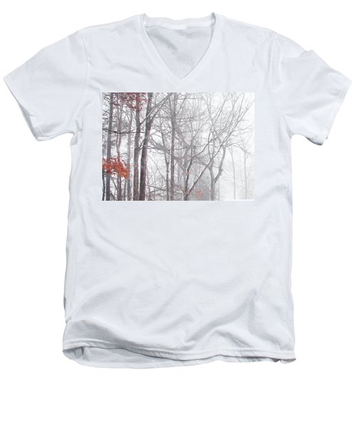 Touch Of Fall In Winter Fog Men's V-Neck T-Shirt