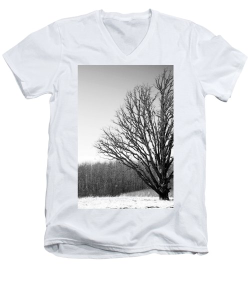 Tree In Winter 2 Men's V-Neck T-Shirt