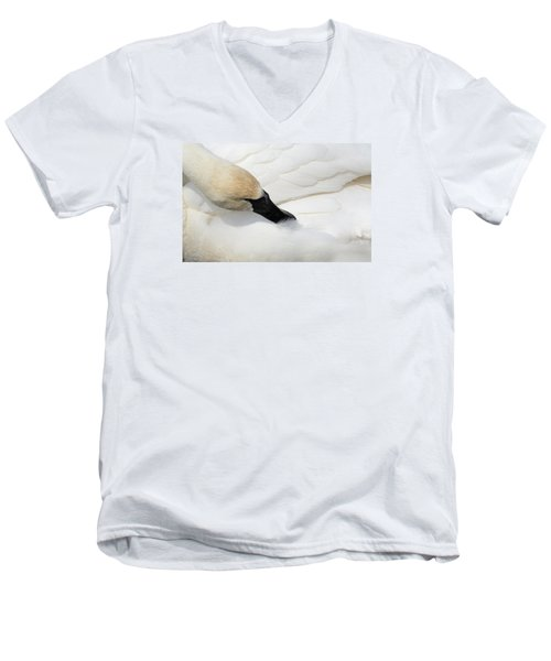 Trumpeter Swan Men's V-Neck T-Shirt