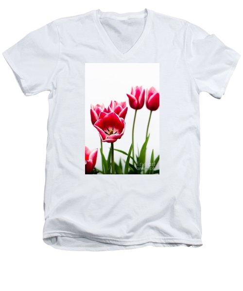 Tulips Say Hello Men's V-Neck T-Shirt