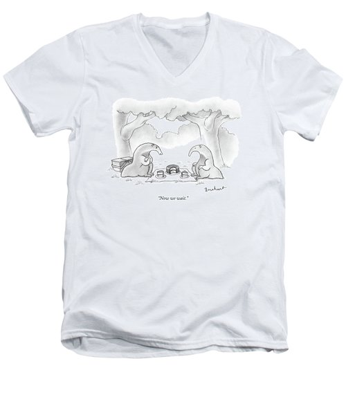 Two Anteaters On A Picnic Wait For Ants To Come Men's V-Neck T-Shirt