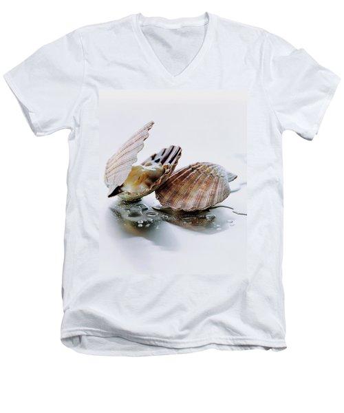 Two Scallops Men's V-Neck T-Shirt