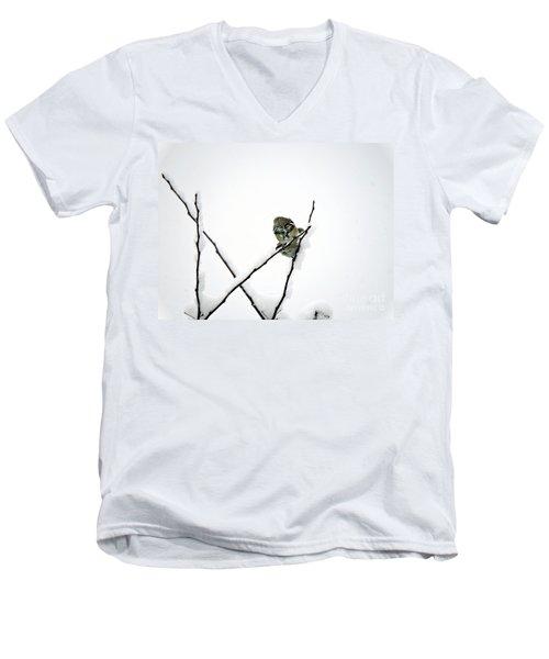 Two Sparrows Men's V-Neck T-Shirt