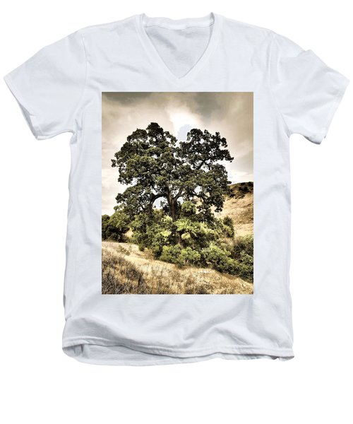 Valley Oak Men's V-Neck T-Shirt