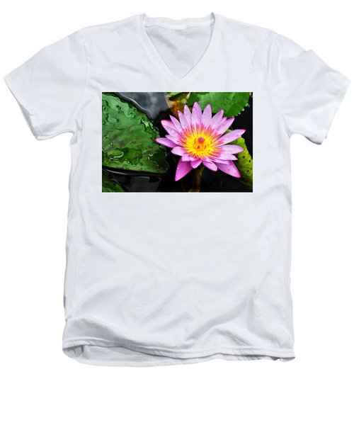 Water Lily Men's V-Neck T-Shirt by Denise Bird
