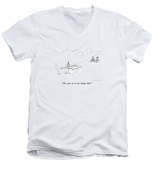 We Must Be In The Italian Alps Men's V-Neck T-Shirt