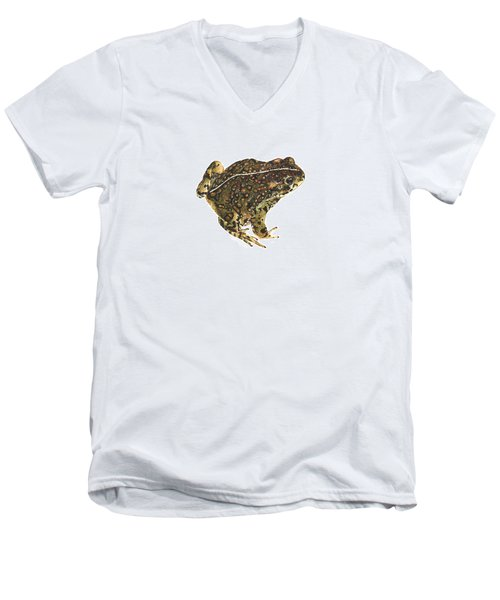 Western Toad Men's V-Neck T-Shirt by Cindy Hitchcock