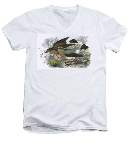 Wheatear Men's V-Neck T-Shirt by English School
