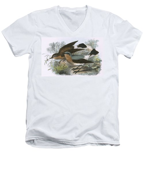 Wheatear Men's V-Neck T-Shirt