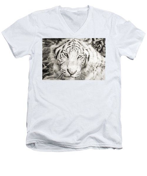 Men's V-Neck T-Shirt featuring the photograph White Tiger by Vincent Bonafede