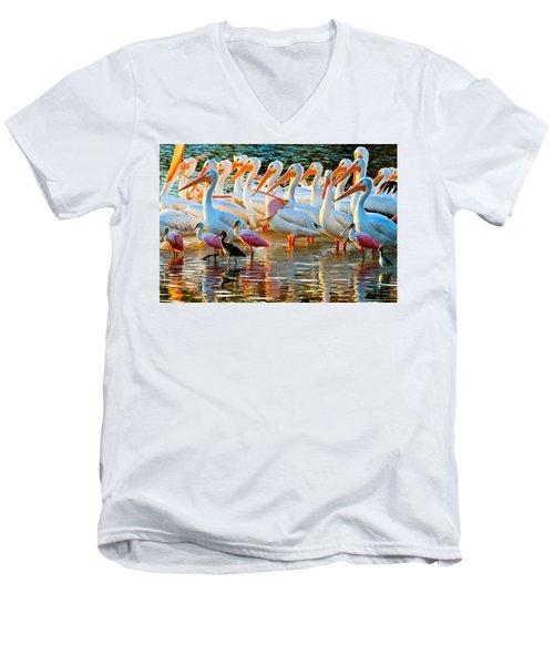 White Pelicans Men's V-Neck T-Shirt