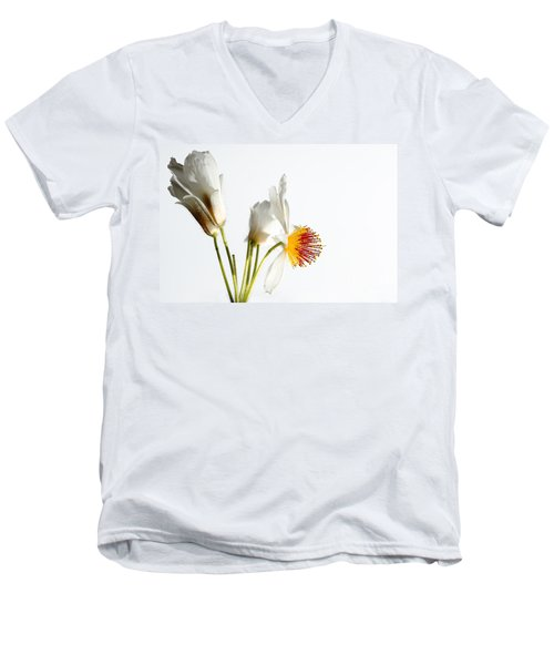 White Sparmannia Africana Plant. Men's V-Neck T-Shirt