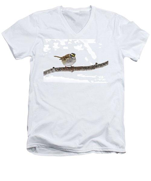 White-throated Sparrow Men's V-Neck T-Shirt