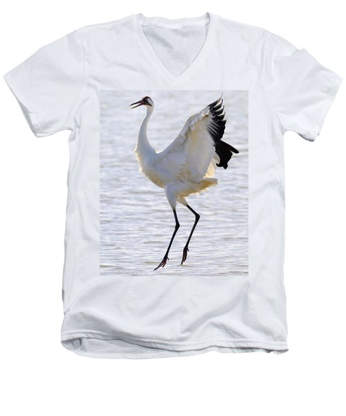 Whooping Crane - Whooping It Up Men's V-Neck T-Shirt by Tony Beck