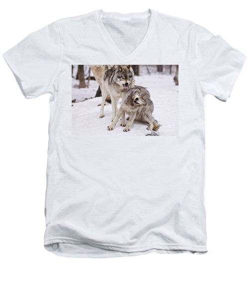 Men's V-Neck T-Shirt featuring the photograph Who's The Boss by Wolves Only