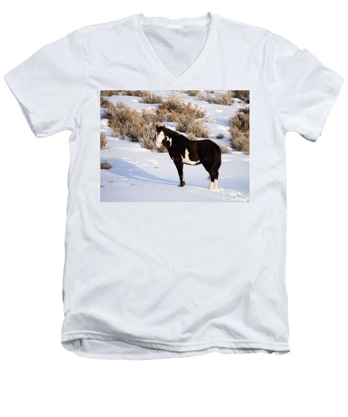 Wild Horse Stallion Men's V-Neck T-Shirt