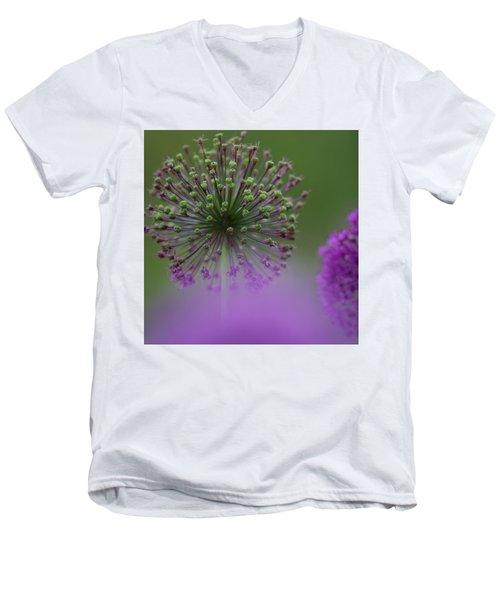 Wild Onion Men's V-Neck T-Shirt